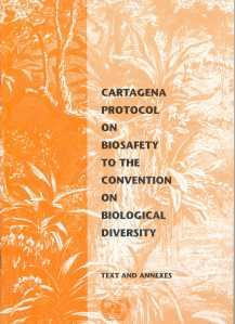 Socio-Economics and the Cartagena Protocol on Biosafety